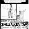 19 Dicembre 1986 Helter Skelter At C.S. Leoncavallo Cervella - Acid Flowers