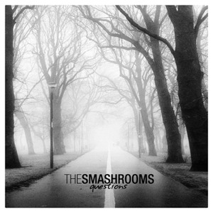 The Smashrooms - [2010] Questions